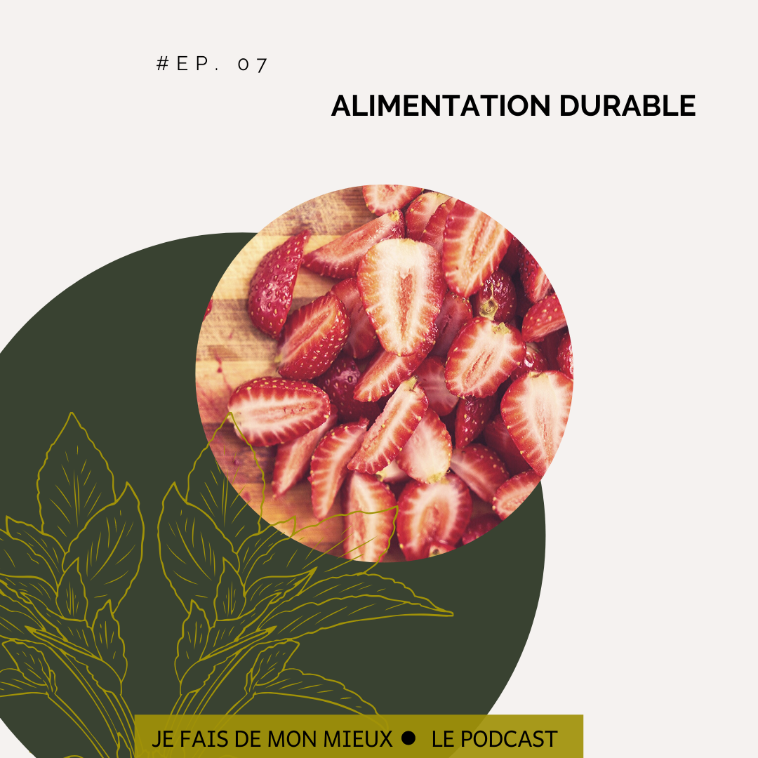 Episode 7 alimentation durable
