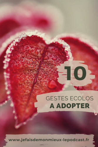 10-gestes-ecologiques-a-adopter